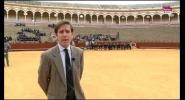 Colegios en La Maestranza de Sevilla
